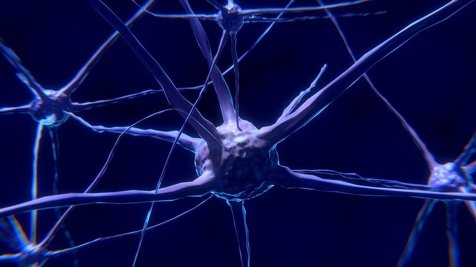 cursuri EMC neuropatie diabetica